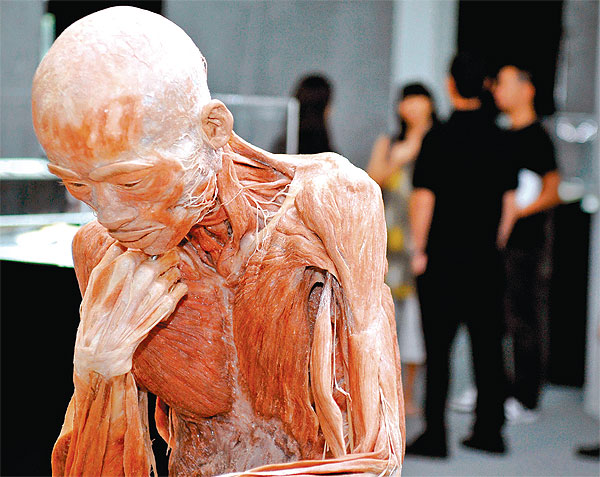 The BODY Show | Bangkok Post: learning