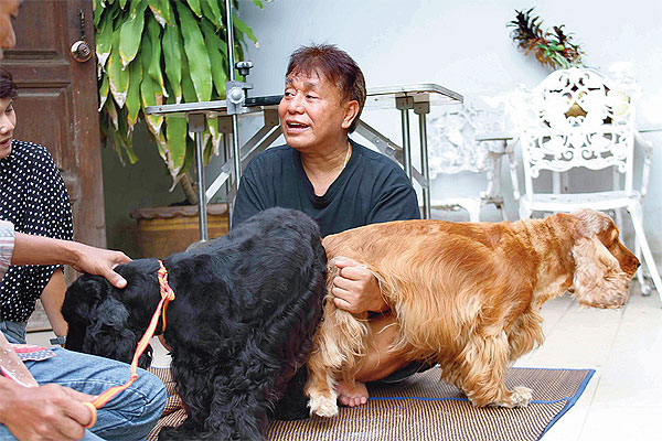 Dog mating services | Bangkok Post: learning