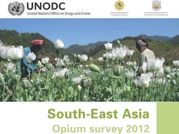Illegal drugs: Production rising in Myanmar | Bangkok Post ...
