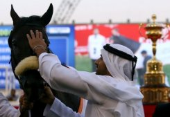 UAE to ban anabolic steriod use in horse sports