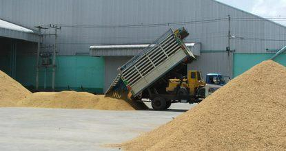 Cut can't end rice ills, Nipon says