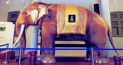Royal elephant museum  Bangkok Post: learning