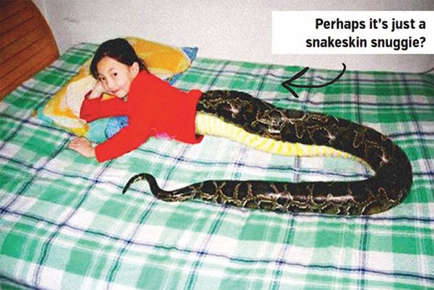 Agree, Giral sex with snakes story opinion