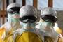 Ebola drug cures monkeys