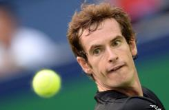 Murray, Ferrer ease through, Berdych out in Valencia