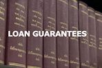 Loan guarantees