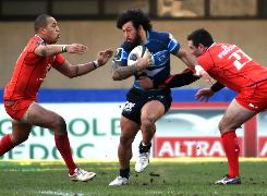 Toulouse out of Europe after Montpellier defeat