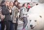 Polar bear sighted in London