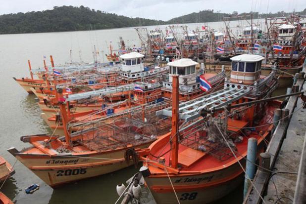 EU to put Thailand 1 step away from fish ban