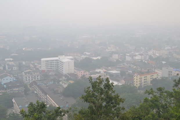 Indonesia forest fires choke South with haze