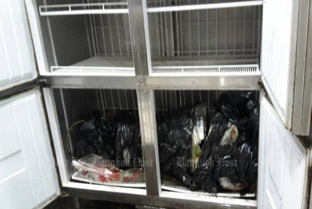 Body in freezer 'dead for 8 years'