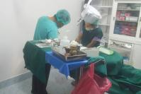 Bogus surgeon caught operating at illegal cosmetic clinic