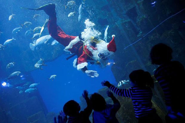 Santa takes the plunge