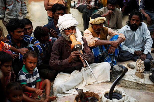 Indian snake charmers struggle to keep dying tradition alive
