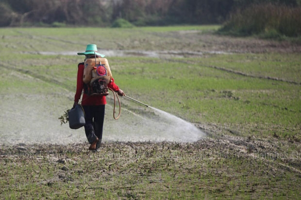 Agriculture Dept to slap controls on farm chemicals