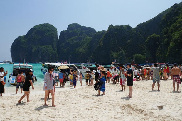 Parks chief rejects lower Phi Phi entry fee