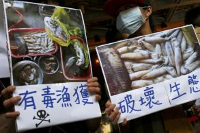 Vietnam names 11 officials over Formosa environmental disaster