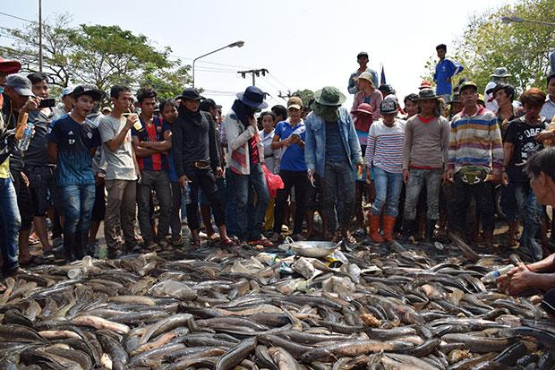 Cambodians block bridge with fish over duty hike | Bangkok Post: news