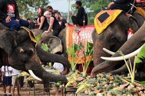 Blessings and buffets for elephants on their day