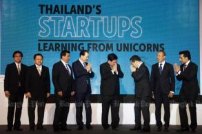 'Learning from Unicorns'