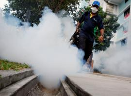 Singapore confirms two new cases of Zika virus