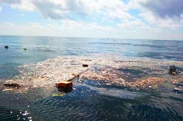 Gulf Islands News