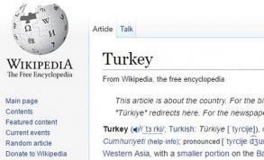 Turkey turns off Wikipedia