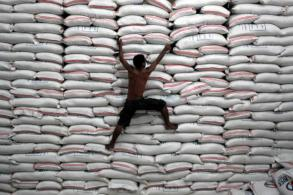 Philippines to import 250,000 tonnes of rice in June