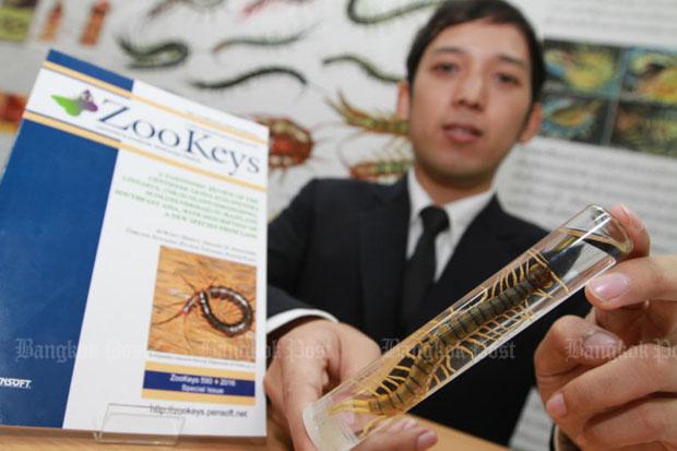 Amphibious centipede brings new species award