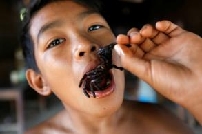 Hungry? Have a Cambodian fried tarantula