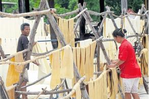 Rubber planters rally as prices slide 40%