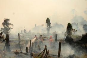 Indonesia's disaster agency says forest fire threat to rise