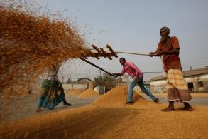Bangladesh to buy rice from Thailand, India