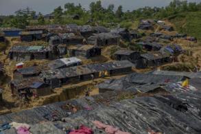 Wild elephants attack Rohingya camps, kill 4 in Bangladesh
