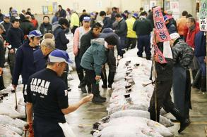 Famed Tsukiji fish market in Tokyo to be moved next year