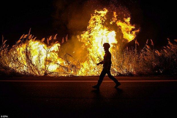 39 dead in 'terror-arson' fires in Portugal, Spain | Bangkok Post: news