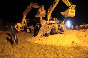 Wild elephant to be autopsied and buried
