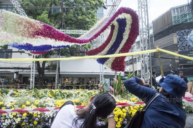 Visitors flock to flower tunnel