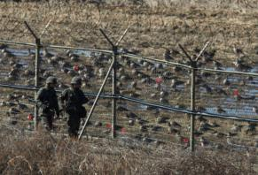 N. Koreans fire at soldier trying to defect to South