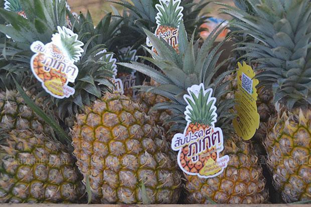 Orders open for Phuket pineapples, at only B15,430 | Bangkok Post: learning