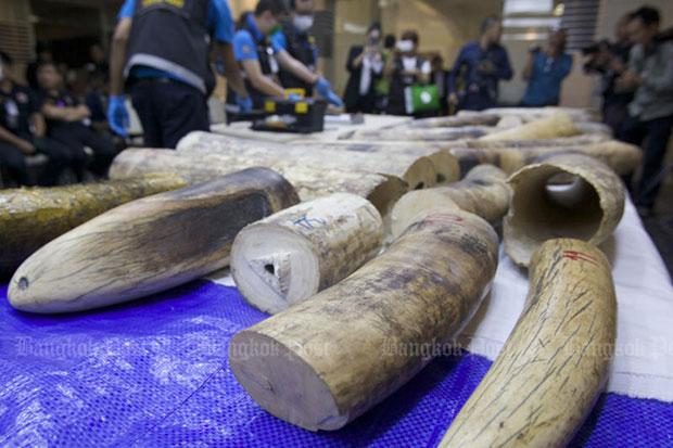 Thailand seizes €385000 haul of African elephant tusks
