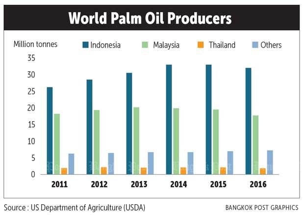 EU move fuelling unease among palm oil producers | Bangkok Post: news