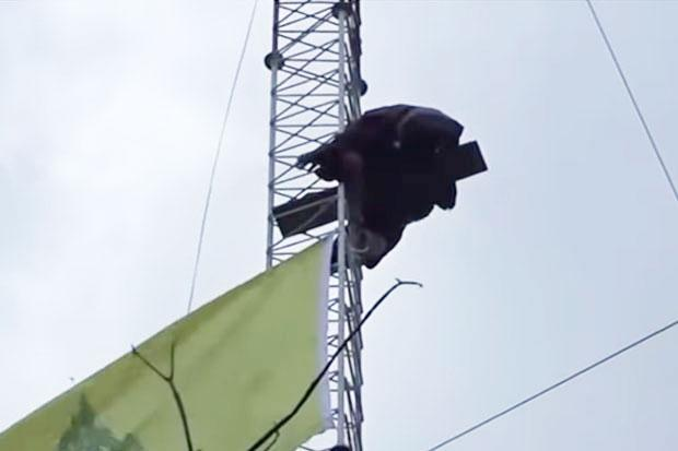 Monk continues radio tower protest against eviction | Bangkok Post: news