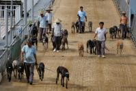 Asia's only dog-racing track closes