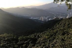 HK closes park as dengue cases spike