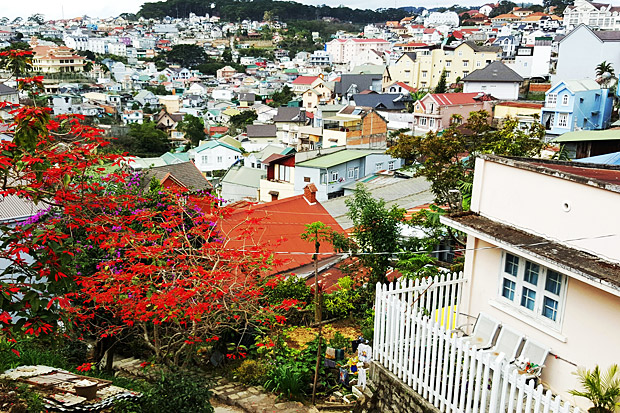 DALAT: Love at first sight in Vietnam's city of eternal spring