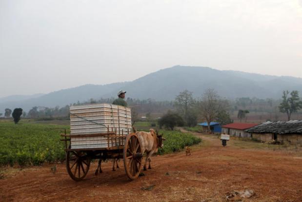 Myanmar seizes heroin haul worth $4.7m: police   Bangkok Post: news