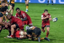 Toulouse and Saracens march on towards quarter-finals | Bangkok Post: news