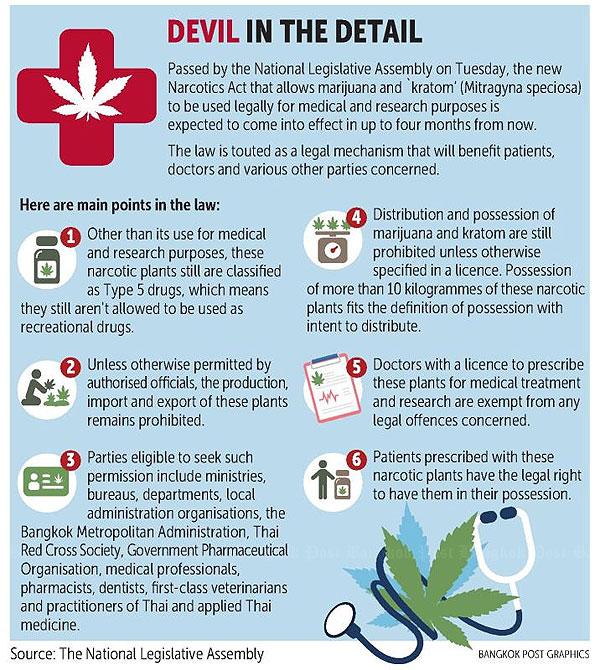 Weed on road to legalisation | Bangkok Post: news