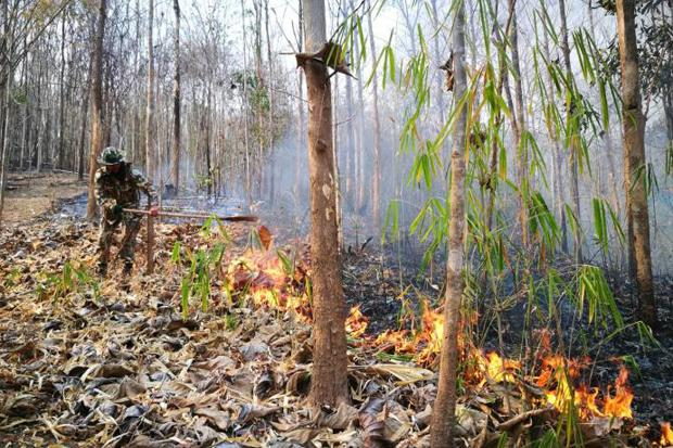 Haze levels maintain hold in North | Bangkok Post: news